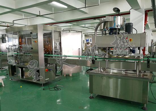 12头膏液灌装旋盖生产线